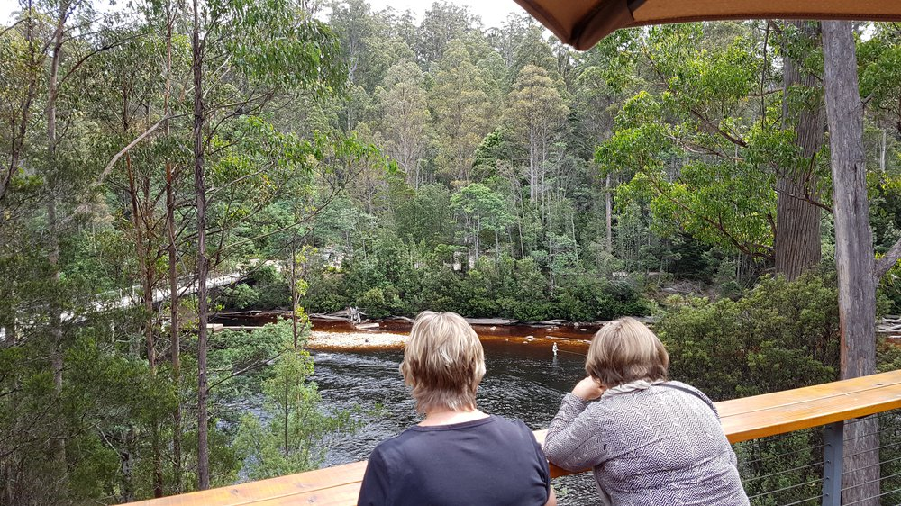 Tahune Adventures Tasmania - cafe deck view