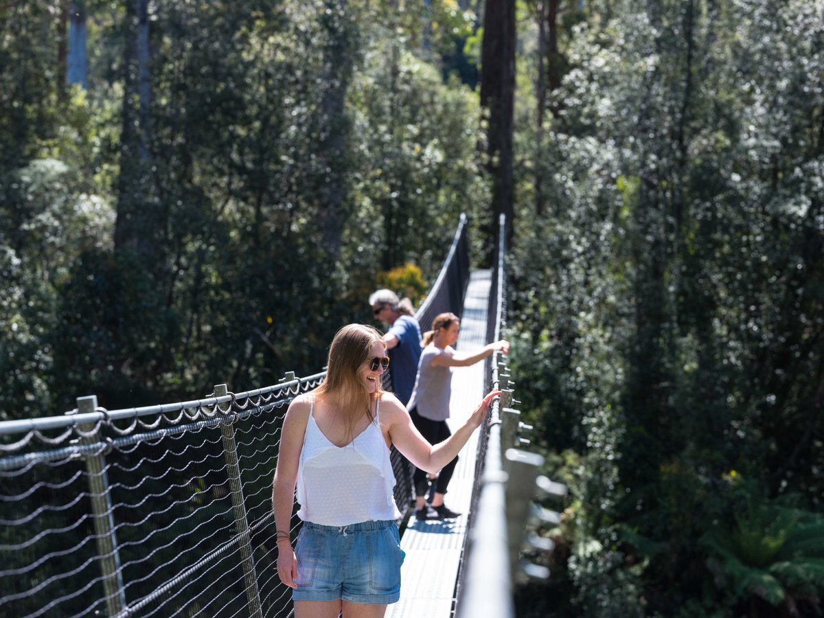 Swinging Bridges