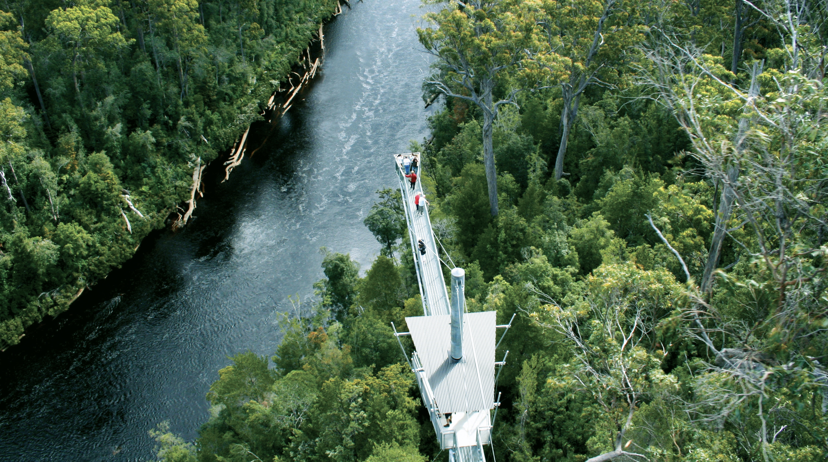 tahune airwalk from above